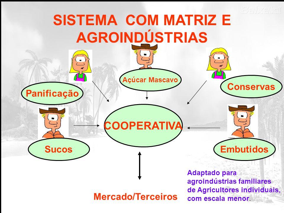 SISTEMA COM MATRIZ E AGROINDÚSTRIAS COOPERATIVA Mercado/Terceiros Embutidos Conservas Açúcar Mascavo Sucos Panificação Adaptado para agroindústrias familiares de Agricultores individuais, com escala menor.