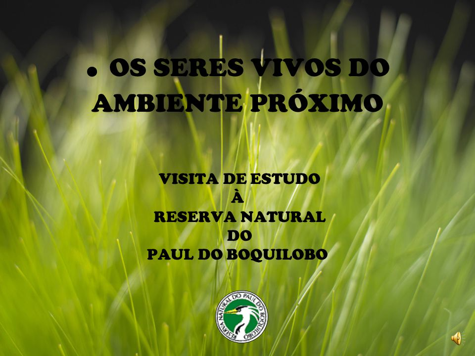 . OS SERES VIVOS DO AMBIENTE PRÓXIMO VISITA DE ESTUDO À RESERVA NATURAL DO PAUL DO BOQUILOBO