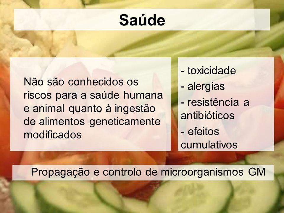 Saúde Não são conhecidos os riscos para a saúde humana e animal quanto à ingestão de alimentos geneticamente modificados - toxicidade - alergias - res