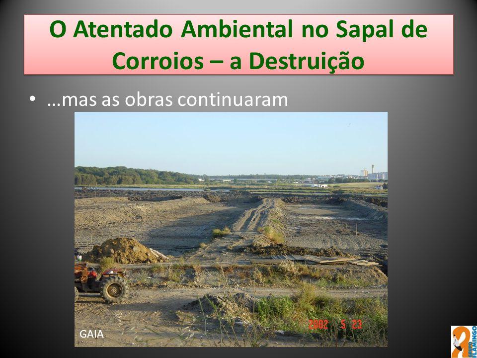 O Atentado Ambiental no Sapal de Corroios – a Destruição …mas as obras continuaram GAIA