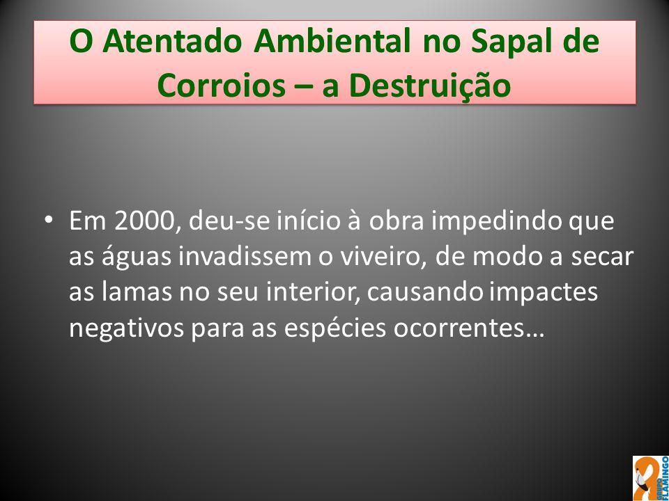 O Atentado Ambiental no Sapal de Corroios – a Destruição Em 2000, deu-se início à obra impedindo que as águas invadissem o viveiro, de modo a secar as