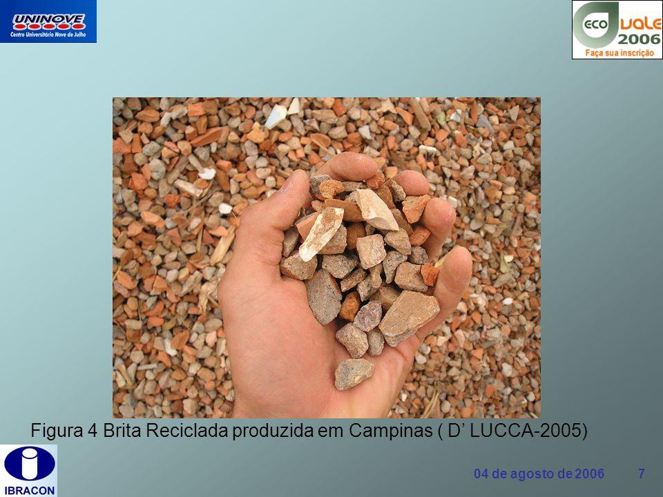 04 de agosto de 2006 18 Mercado de reciclados O que impede a iniciativa privada de produzir agregados reciclados para serem largamente consumidos na produção de concreto.