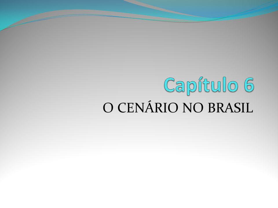 O CENÁRIO NO BRASIL