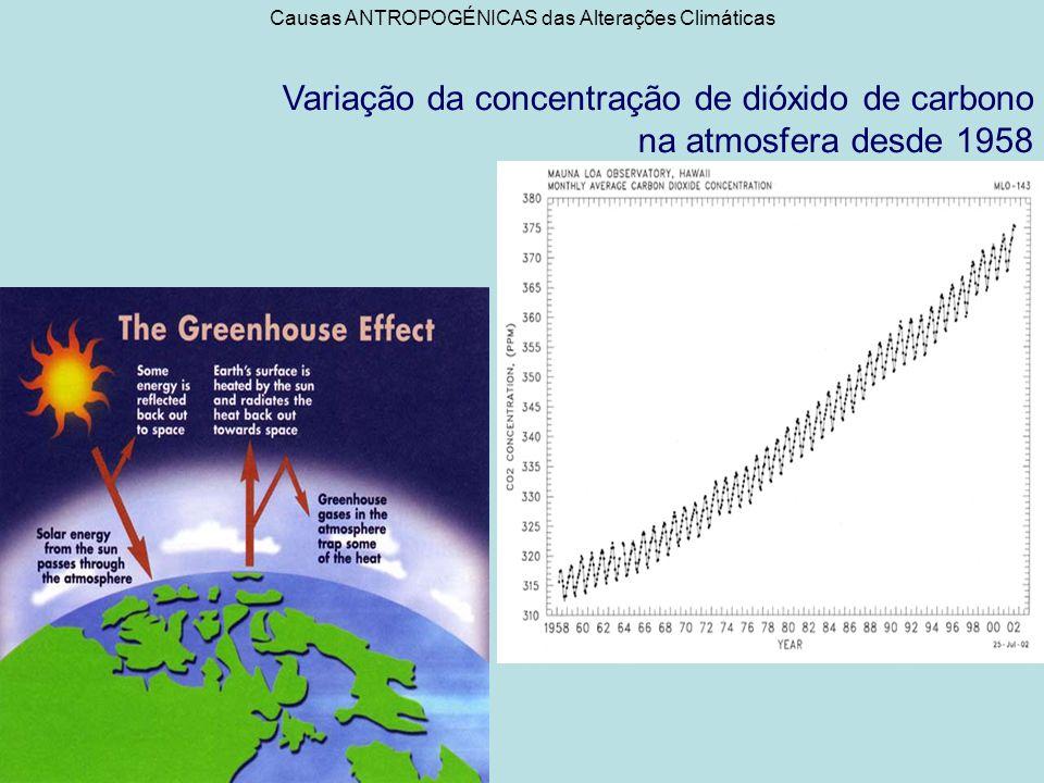 Consequências das alterações climáticas Aquecimento Global/ aumento da temperatura média da atmosfera: a temperatura média global seria mais baixa 2º se não houvesse actividade humana, com a previsão de aumento de 1ºC a 3,5ºC para os próximos 100anos.