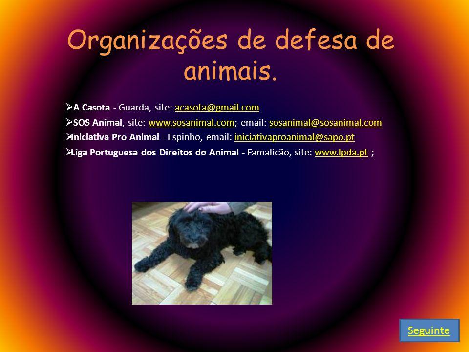 Organizações de defesa de animais. A Casota - Guarda, site: acasota@gmail.com acasota@gmail.com SOS Animal, site: www.sosanimal.com; email: sosanimal@
