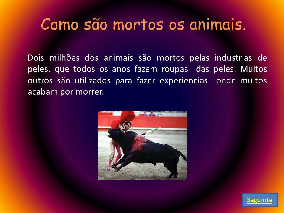 Como são mortos os animais.