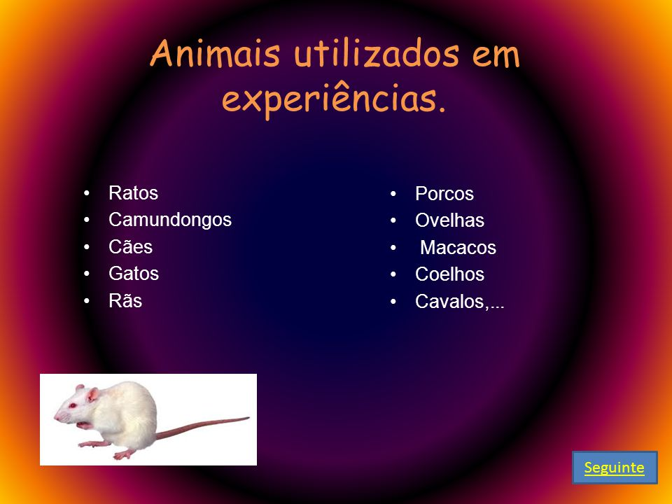 Animais utilizados em experiências.
