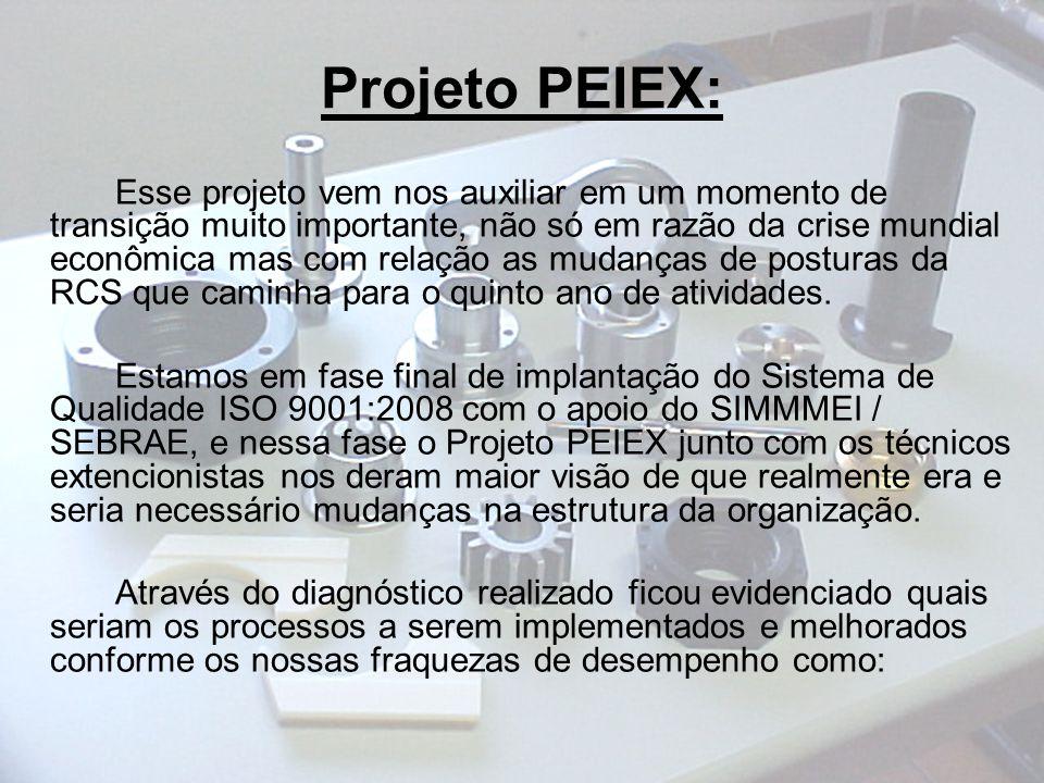 Projeto PEIEX: Esse projeto vem nos auxiliar em um momento de transição muito importante, não só em razão da crise mundial econômica mas com relação as mudanças de posturas da RCS que caminha para o quinto ano de atividades.