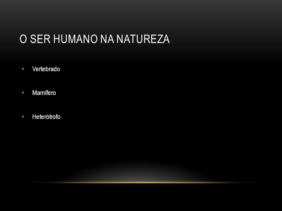 O SER HUMANO NA NATUREZA Vertebrado Mamífero Heterótrofo