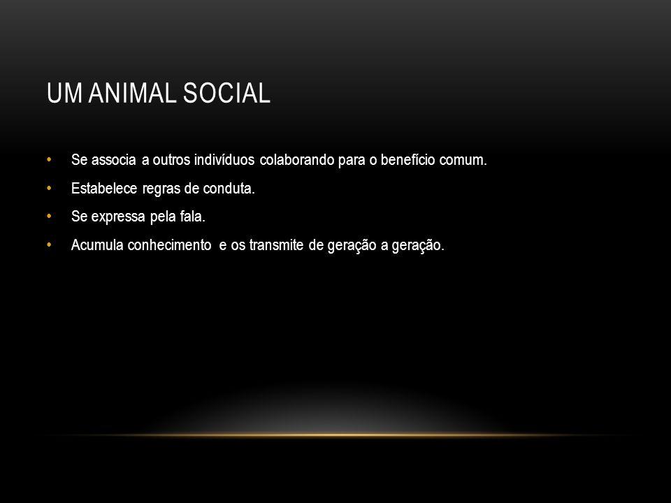 UM ANIMAL SOCIAL Se associa a outros indivíduos colaborando para o benefício comum.