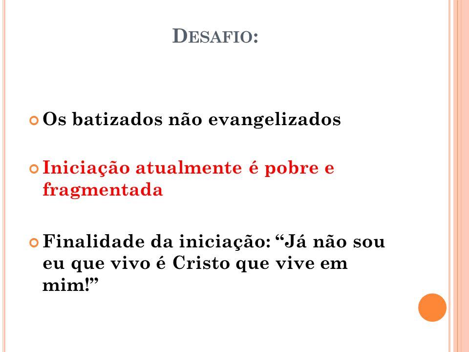 D ESAFIO : Os batizados não evangelizados Iniciação atualmente é pobre e fragmentada Finalidade da iniciação: Já não sou eu que vivo é Cristo que vive