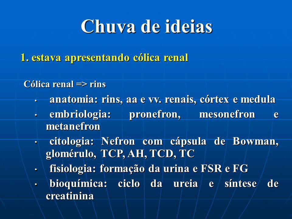 Chuva de ideias 1. estava apresentando cólica renal Cólica renal => rins Cólica renal => rins anatomia: rins, aa e vv. renais, córtex e medula anatomi