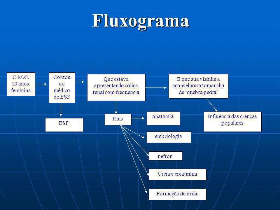 Fluxograma C.M.C, 19 anos, feminina Contou ao médico do ESF Que estava apresentando cólica renal com frequencia E que sua vizinha a aconselhou a tomar
