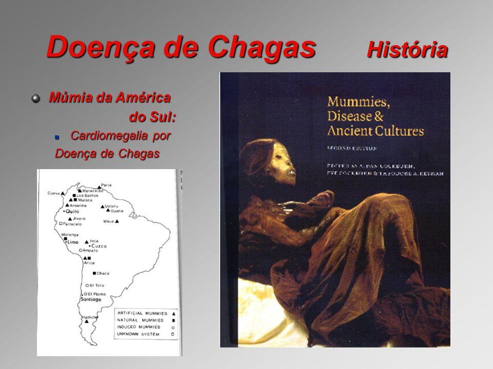 Doença de Chagas Clínica Período de incubação: é de 4 a 12 dias é de 4 a 12 dias a partir da infecção até o aparecimento dos sintomas da fase aguda.
