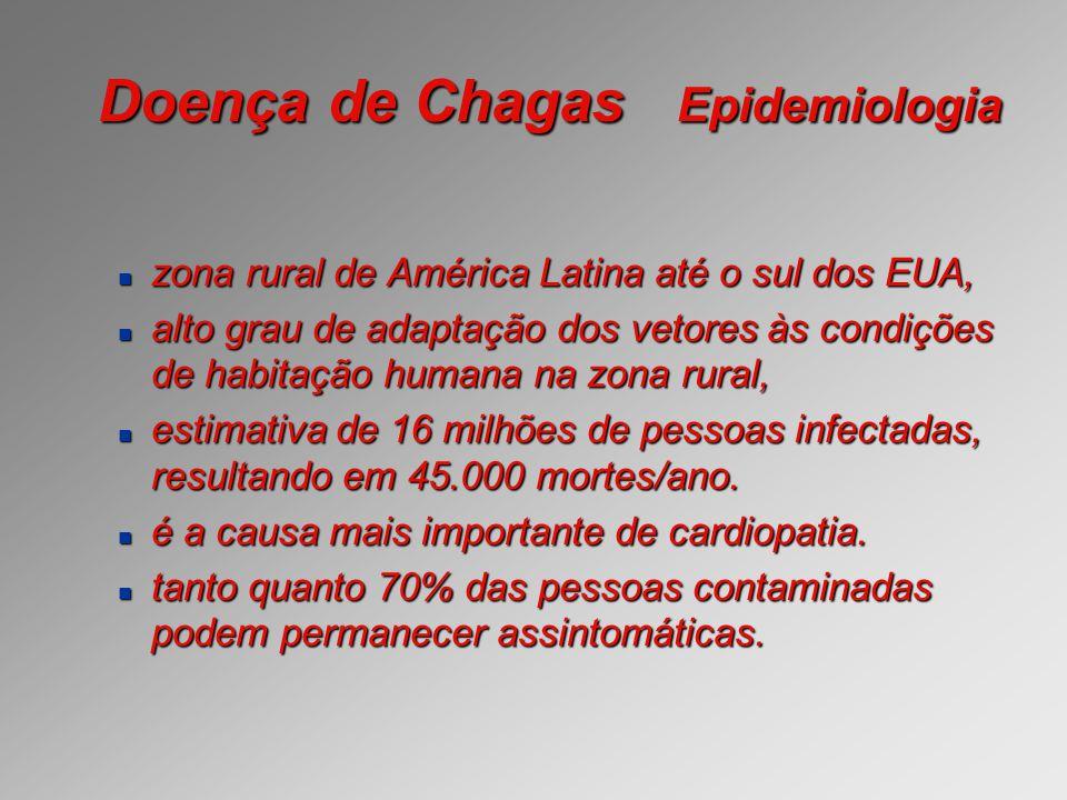 Doença de Chagas Epidemiologia zona rural de América Latina até o sul dos EUA, zona rural de América Latina até o sul dos EUA, alto grau de adaptação