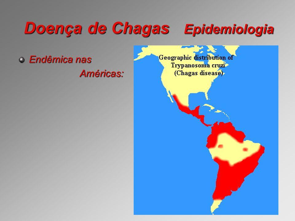 Doença de Chagas Epidemiologia Endêmica nas Américas: Américas: