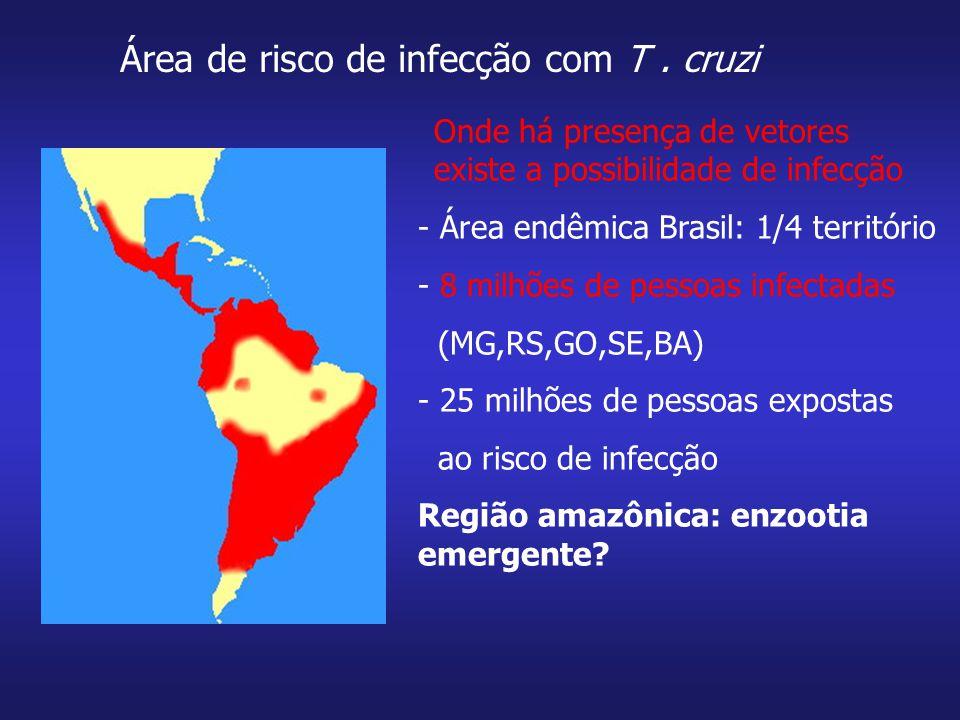 - Área endêmica Brasil: 1/4 território - 8 milhões de pessoas infectadas (MG,RS,GO,SE,BA) - 25 milhões de pessoas expostas ao risco de infecção Região