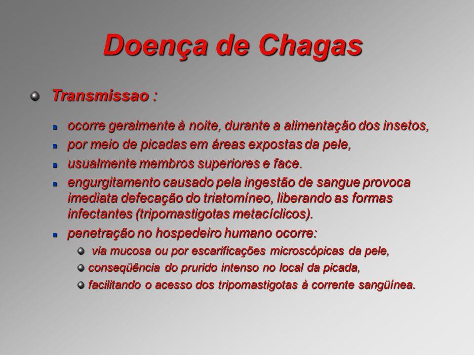 Doença de Chagas Transmissao : Transmissao : ocorre geralmente à noite, durante a alimentação dos insetos, ocorre geralmente à noite, durante a alimen