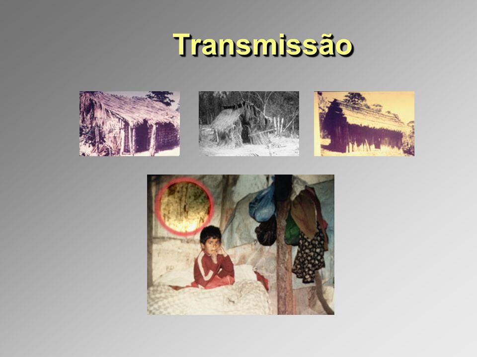 TransmissãoTransmissão