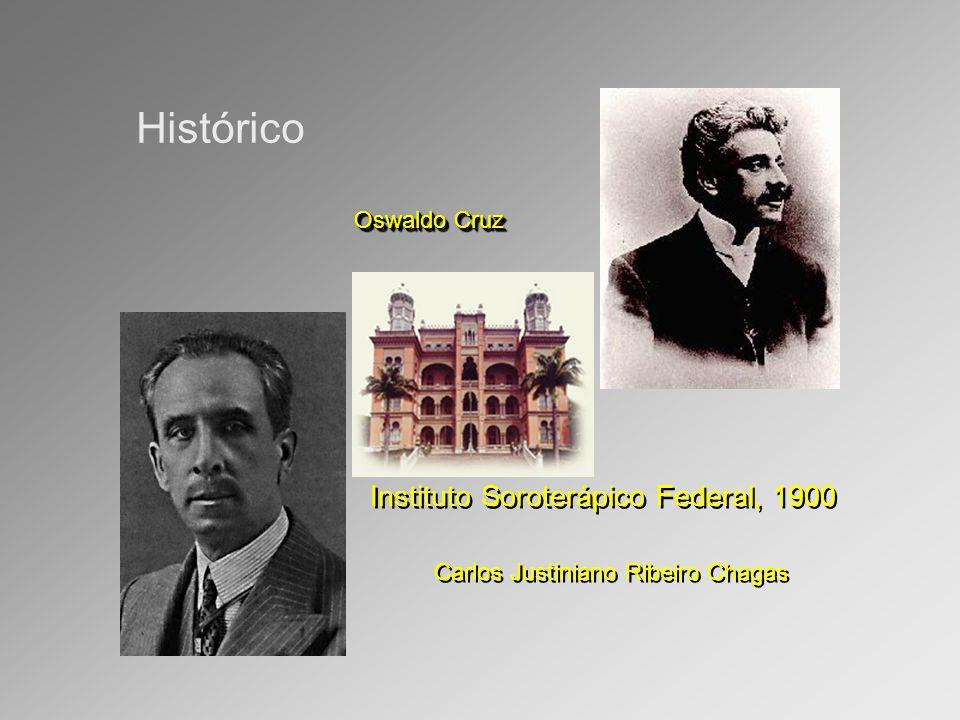 Histórico Carlos Justiniano Ribeiro Chagas Oswaldo Cruz Instituto Soroterápico Federal, 1900