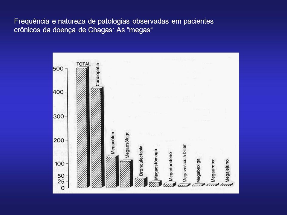 Frequência e natureza de patologias observadas em pacientes crônicos da doença de Chagas: As megas