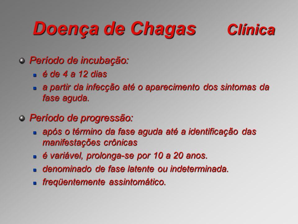 Doença de Chagas Clínica Período de incubação: é de 4 a 12 dias é de 4 a 12 dias a partir da infecção até o aparecimento dos sintomas da fase aguda. a
