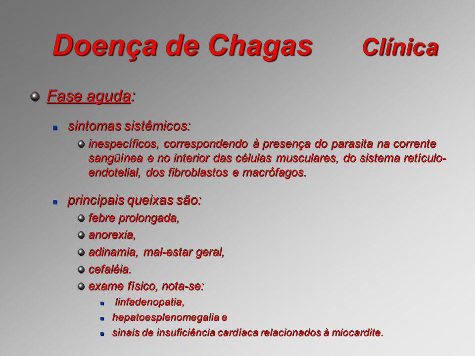 Doença de Chagas Clínica Fase aguda: sintomas sistêmicos: sintomas sistêmicos: inespecíficos, correspondendo à presença do parasita na corrente sangüí