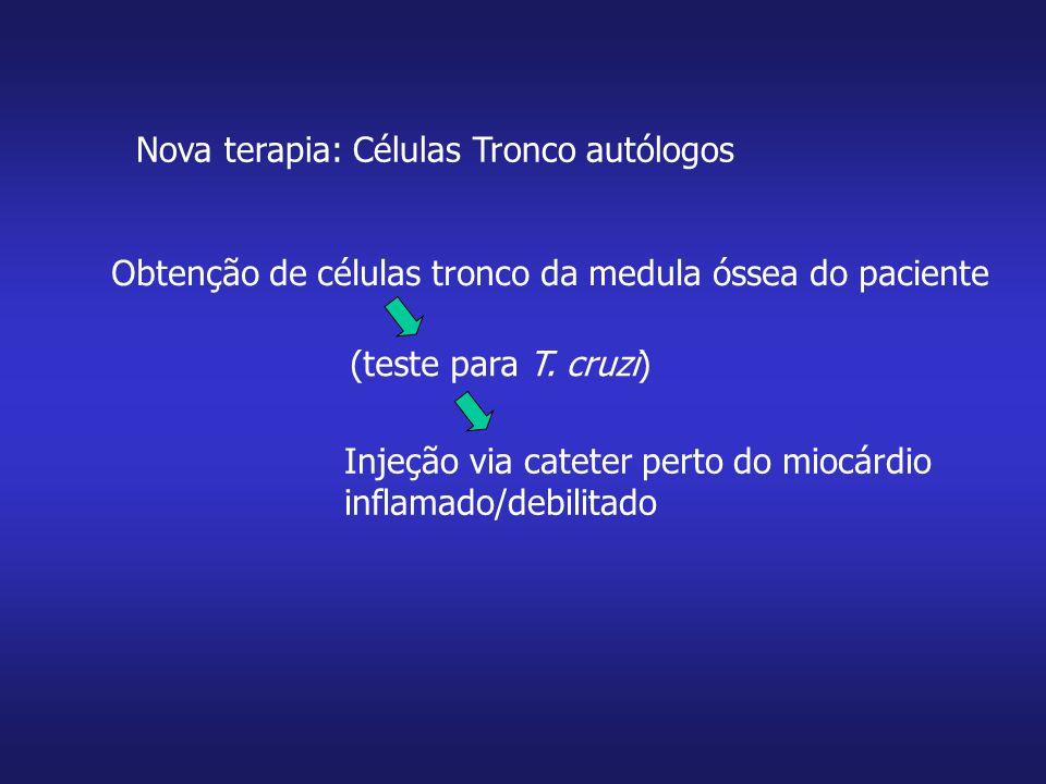 Nova terapia: Células Tronco autólogos Obtenção de células tronco da medula óssea do paciente (teste para T. cruzi) Injeção via cateter perto do miocá
