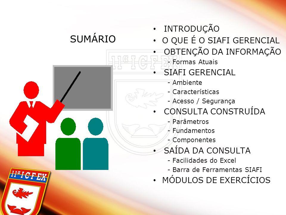 SUMÁRIO INTRODUÇÃO O QUE É O SIAFI GERENCIAL OBTENÇÃO DA INFORMAÇÃO - Formas Atuais SIAFI GERENCIAL - Ambiente - Características - Acesso / Segurança CONSULTA CONSTRUÍDA - Parâmetros - Fundamentos - Componentes SAÍDA DA CONSULTA - Facilidades do Excel - Barra de Ferramentas SIAFI MÓDULOS DE EXERCÍCIOS