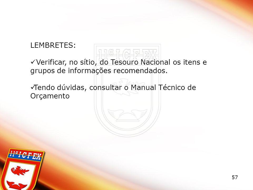 57 LEMBRETES: Verificar, no sítio, do Tesouro Nacional os itens e grupos de informações recomendados.