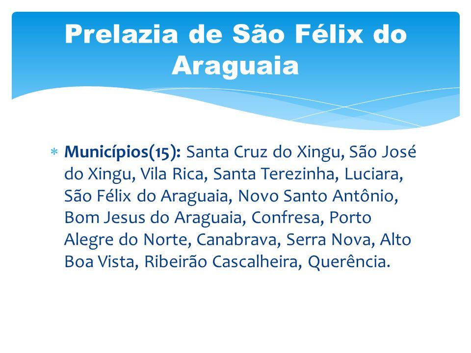 Municípios(15): Santa Cruz do Xingu, São José do Xingu, Vila Rica, Santa Terezinha, Luciara, São Félix do Araguaia, Novo Santo Antônio, Bom Jesus do A