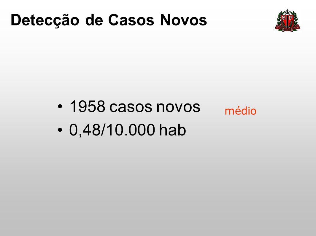 Detecção de Casos Novos 1958 casos novos 0,48/10.000 hab médio