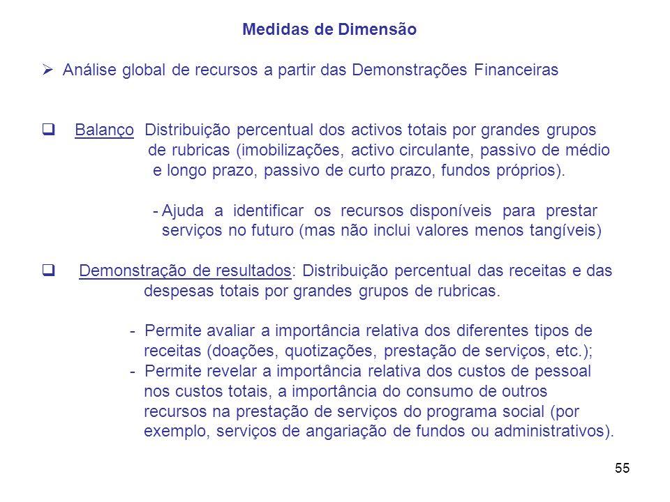 55 Medidas de Dimensão Análise global de recursos a partir das Demonstrações Financeiras Balanço Distribuição percentual dos activos totais por grande