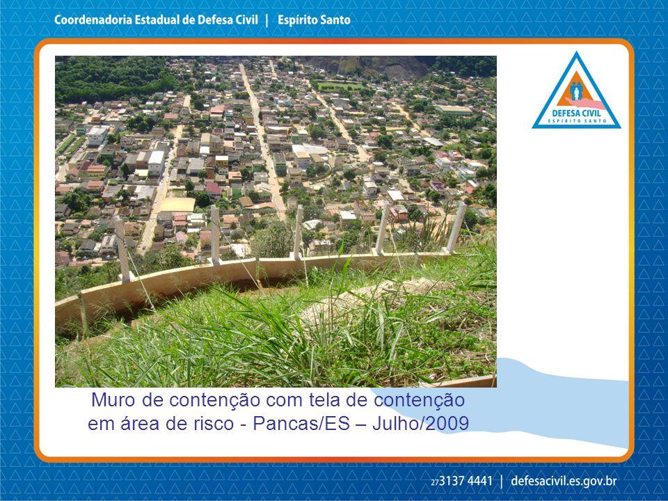 Muro de contenção com tela de contenção em área de risco - Pancas/ES – Julho/2009