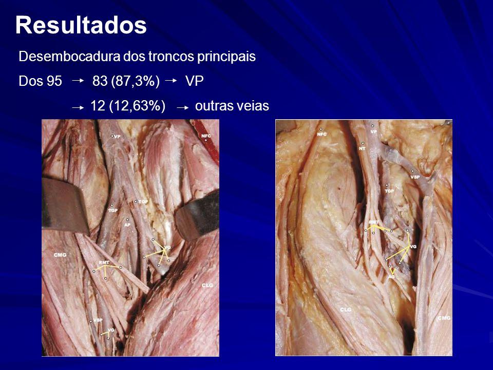 Desembocadura dos troncos principais Dos 95 83 (87,3%) VP 12 (12,63%) outras veias