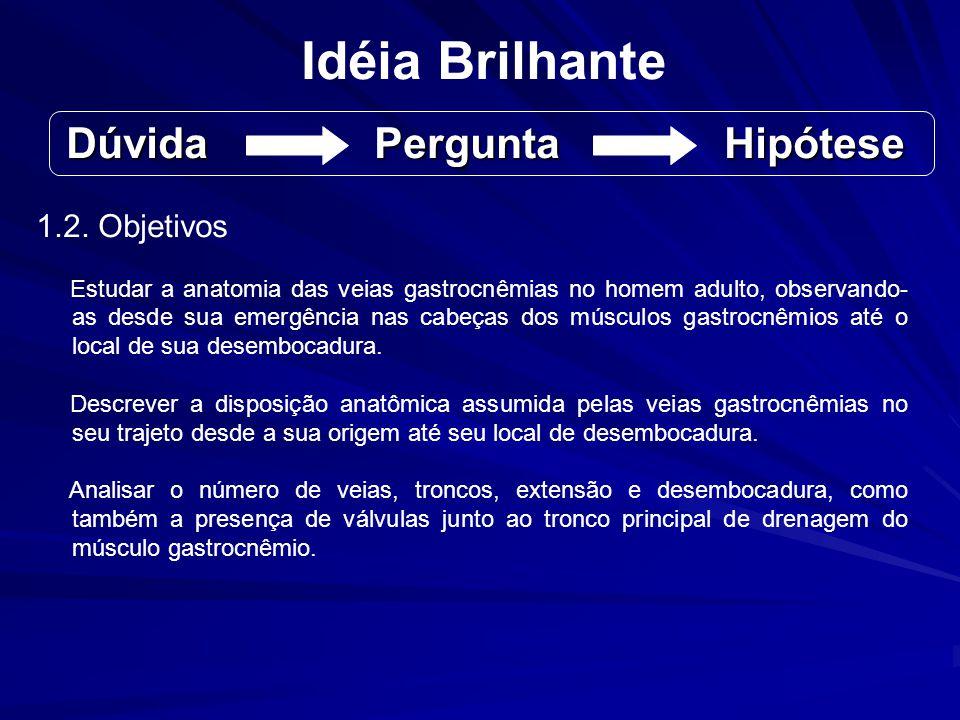 Idéia Brilhante 1.2. Objetivos Estudar a anatomia das veias gastrocnêmias no homem adulto, observando- as desde sua emergência nas cabeças dos músculo