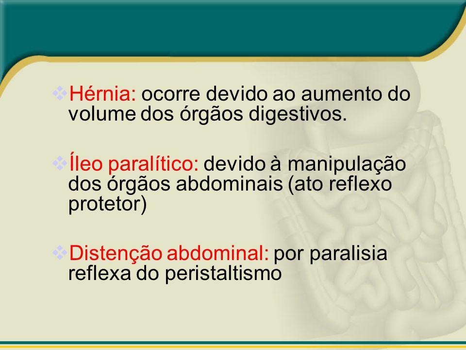 Hérnia: ocorre devido ao aumento do volume dos órgãos digestivos. Íleo paralítico: devido à manipulação dos órgãos abdominais (ato reflexo protetor) D