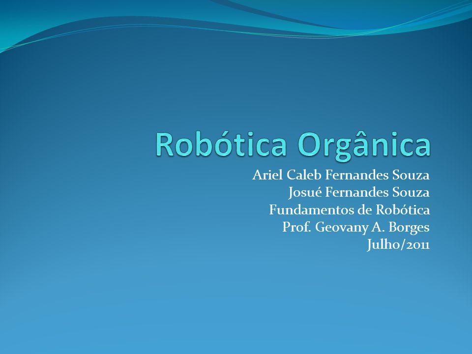 Ariel Caleb Fernandes Souza Josué Fernandes Souza Fundamentos de Robótica Prof. Geovany A. Borges Julho/2011