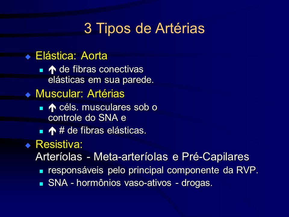3 Tipos de Artérias Elástica: Aorta Elástica: Aorta de fibras conectivas elásticas em sua parede. de fibras conectivas elásticas em sua parede. Muscul