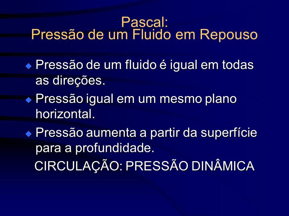 Pascal: Pressão de um Fluido em Repouso Pressão de um fluido é igual em todas as direções. Pressão de um fluido é igual em todas as direções. Pressão
