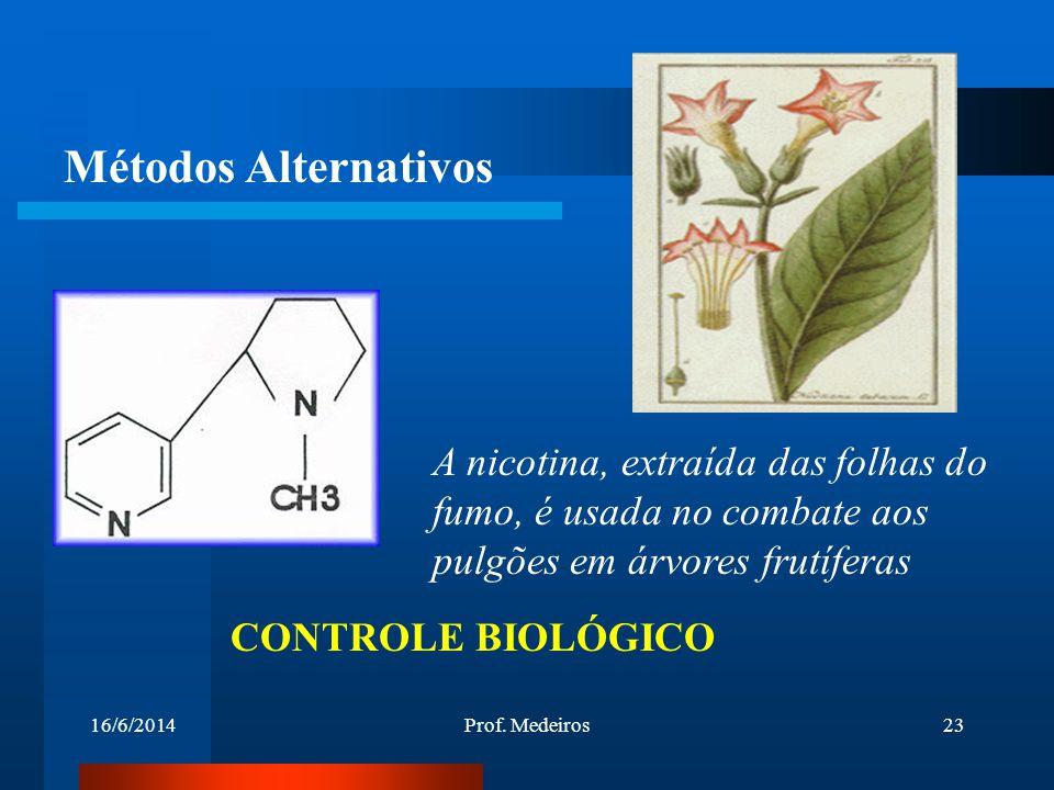 16/6/2014Prof. Medeiros23 A nicotina, extraída das folhas do fumo, é usada no combate aos pulgões em árvores frutíferas CONTROLE BIOLÓGICO Métodos Alt