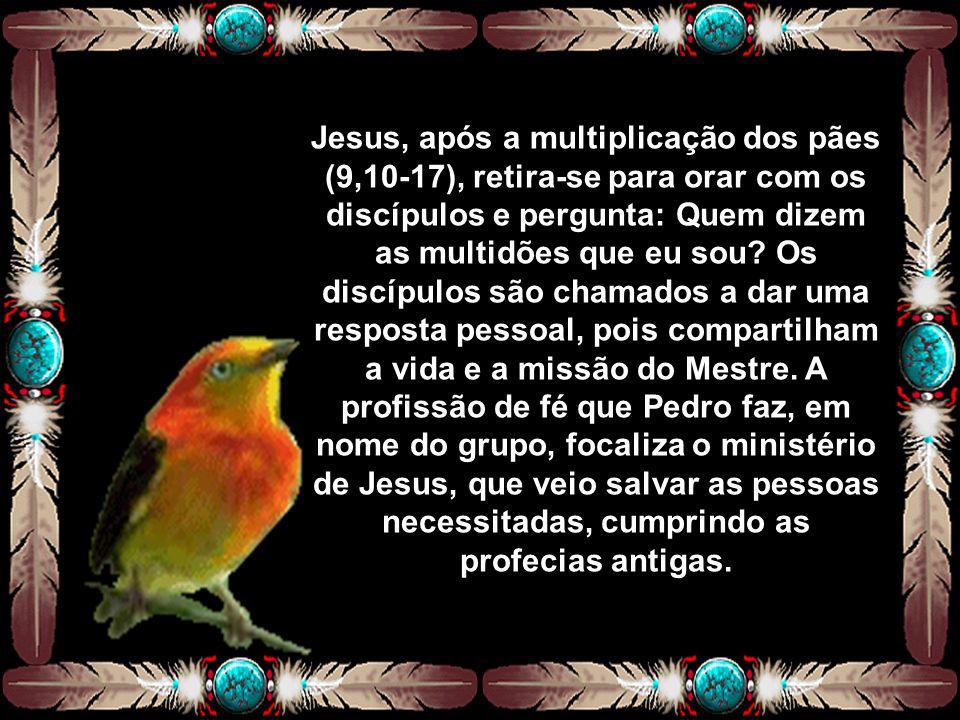 Jesus, após a multiplicação dos pães (9,10-17), retira-se para orar com os discípulos e pergunta: Quem dizem as multidões que eu sou.