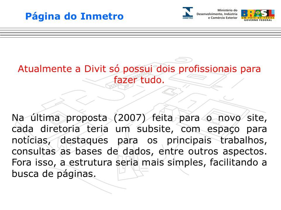 Na última proposta (2007) feita para o novo site, cada diretoria teria um subsite, com espaço para notícias, destaques para os principais trabalhos, consultas as bases de dados, entre outros aspectos.