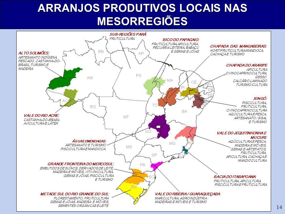 14 ARRANJOS PRODUTIVOS LOCAIS NAS MESORREGIÕES ALTO SOLIMÕES: ARTESANATO INDÍGENA, PESCADO, CASTANHA-DO- BRASIL,TURISMO E MADEIRA VALE DO RIO ACRE: CASTANHA-DO-BRASIL AVICULTURA E LÁTEX ÁGUAS EMENDADAS: ARTESANATO E TURISMO PISCICULTURA E MANDIOCA GRANDE FRONTEIRA DO MERCOSUL: EMBUTIDOS DE SUÍNOS, DERIVADOS DE LEITE, MADEIRA E MÓVEIS, VITIVINICULTURA, GEMAS E JÓIAS, PISCICULTURA E TURISMO METADE SUL DO RIO GRANDE DO SUL: FLORESTAMENTO, FRUTICULTURA GEMAS E JÓIAS, MADEIRA E MÓVEIS, SEMENTES ORGÂNICAS E LEITE BICO DO PAPAGAIO: FRUTICULTURA,APICULTURA, PECUÁRIA LEITEIRA, BABAÇU E GEMAS E JÓIAS CHAPADA DO ARARIPE APICULTURA OVINOCAPRINOCULTURA, GESSO CALCÁRIO LAMINADO TURISMO/CULTURA CHAPADA DAS MANGABEIRAS: HORTIFRUTICULTURA/MANDIOCA, CACHAÇA E TURISMO XINGÓ: PISCICULTURA, FRUTICULTURA, OVINOCAPRINOCULTURA AQÜICULTURA E PESCA, ARTESANATO / SISAL E TURISMO VALE DO JEQUITINHONHA E MUCURI: AQÜICULTURA E PESCA, MADEIRA E MÓVEIS, GEMAS E ARTEFATOS, FRUTICULTURA, APICULTURA, CACHAÇA E MANDIOCULTURA BACIA DO ITABAPOANA: FRUTICULTURA, APICULTURA, PISCICULTURA E FRUTICULTURA VALE DO RIBEIRA / GUARAQUEÇABA: MARICULTURA, AGROINDÚSTRIA MADEIRAS E MÓVEIS E TURISMO SUB-REGIÕES PARÁ: FRUTICULTURA
