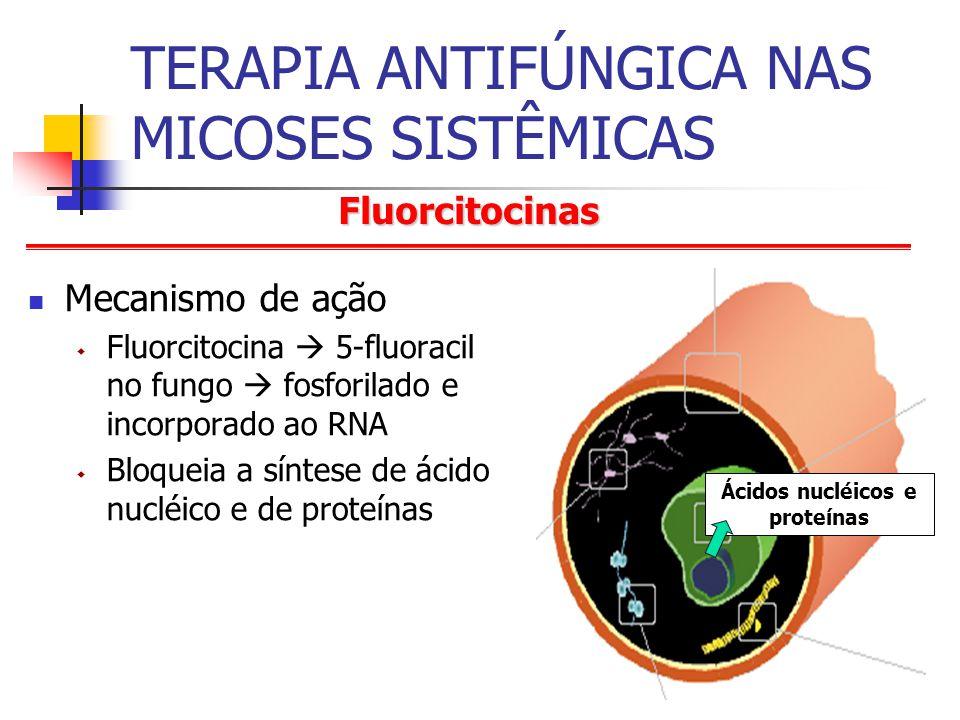 Fluorcitocinas TERAPIA ANTIFÚNGICA NAS MICOSES SISTÊMICAS Mecanismo de ação Fluorcitocina 5-fluoracil no fungo fosforilado e incorporado ao RNA Bloqueia a síntese de ácido nucléico e de proteínas Ácidos nucléicos e proteínas