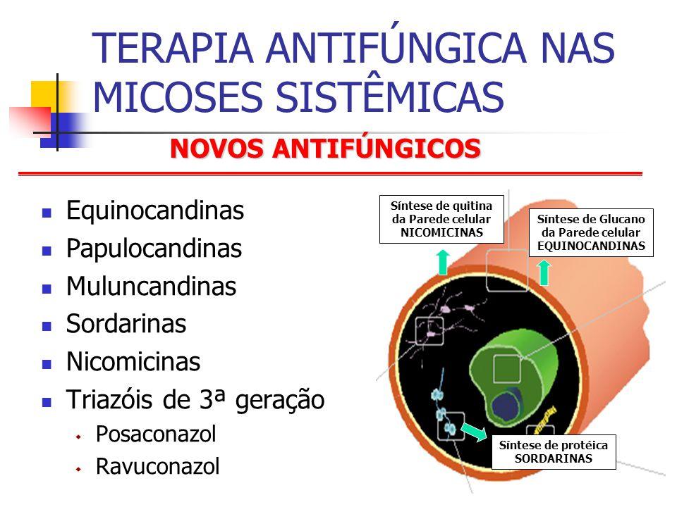 NOVOS ANTIFÚNGICOS TERAPIA ANTIFÚNGICA NAS MICOSES SISTÊMICAS Equinocandinas Papulocandinas Muluncandinas Sordarinas Nicomicinas Triazóis de 3ª geração Posaconazol Ravuconazol Síntese de Glucano da Parede celular EQUINOCANDINAS Síntese de protéica SORDARINAS Síntese de quitina da Parede celular NICOMICINAS