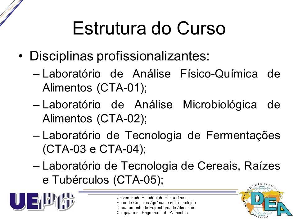 Estrutura do Curso Disciplinas profissionalizantes: –Laboratório de Análise Físico-Química de Alimentos (CTA-01); –Laboratório de Análise Microbiológi