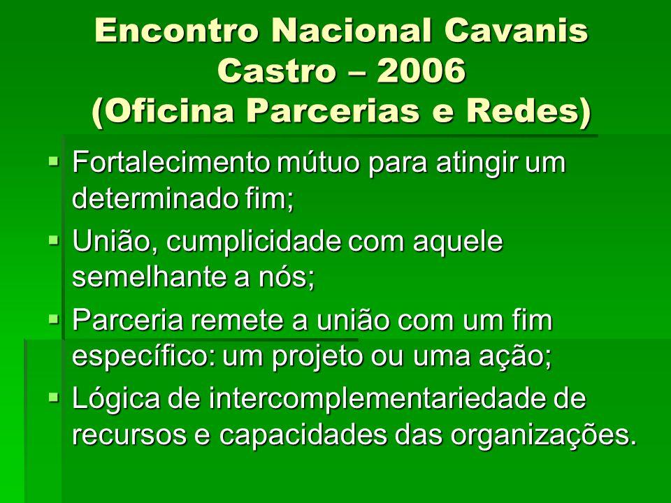 Encontro Nacional Cavanis Castro – 2006 (Oficina Parcerias e Redes) Fortalecimento mútuo para atingir um determinado fim; Fortalecimento mútuo para at
