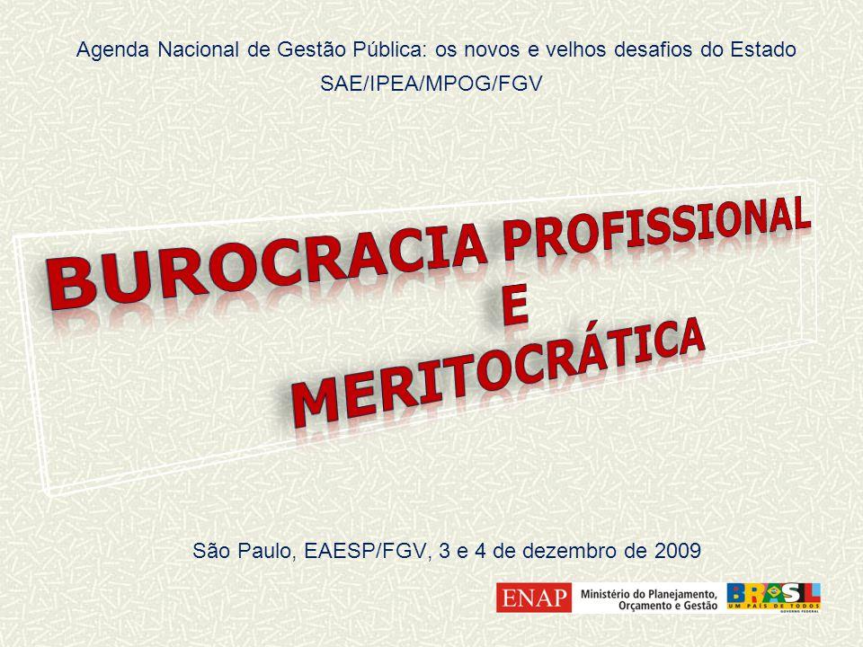 Agenda Nacional de Gestão Pública: os novos e velhos desafios do Estado SAE/IPEA/MPOG/FGV São Paulo, EAESP/FGV, 3 e 4 de dezembro de 2009