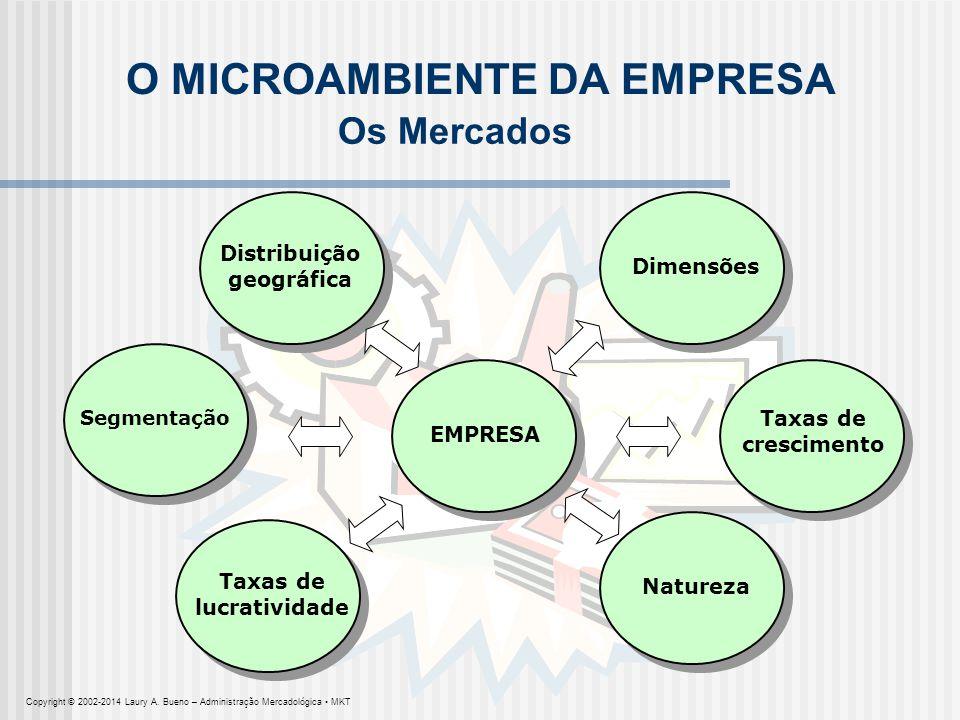 EMPRESA O MICROAMBIENTE DA EMPRESA Segmentação Dimensões Taxas de crescimento Natureza Taxas de lucratividade Distribuição geográfica Os Mercados Copy